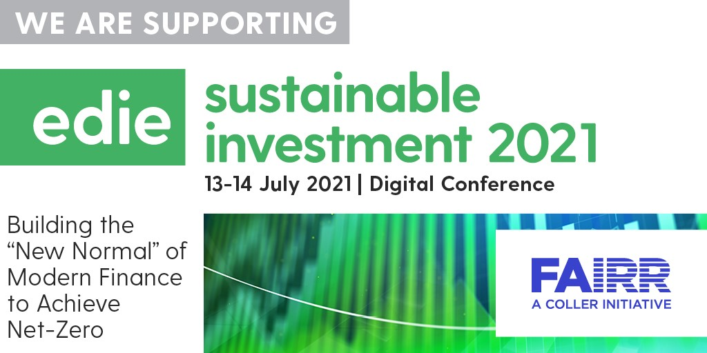 Edie Sustainable Investment Conference 2021 - Preview Image